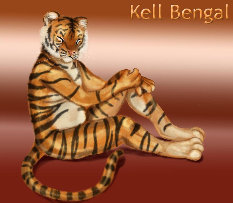 Kell Bengal by corvox