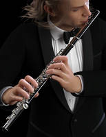 Flute Concerto by Protozoon75