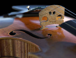 Violin 3D model Close-up by Protozoon75