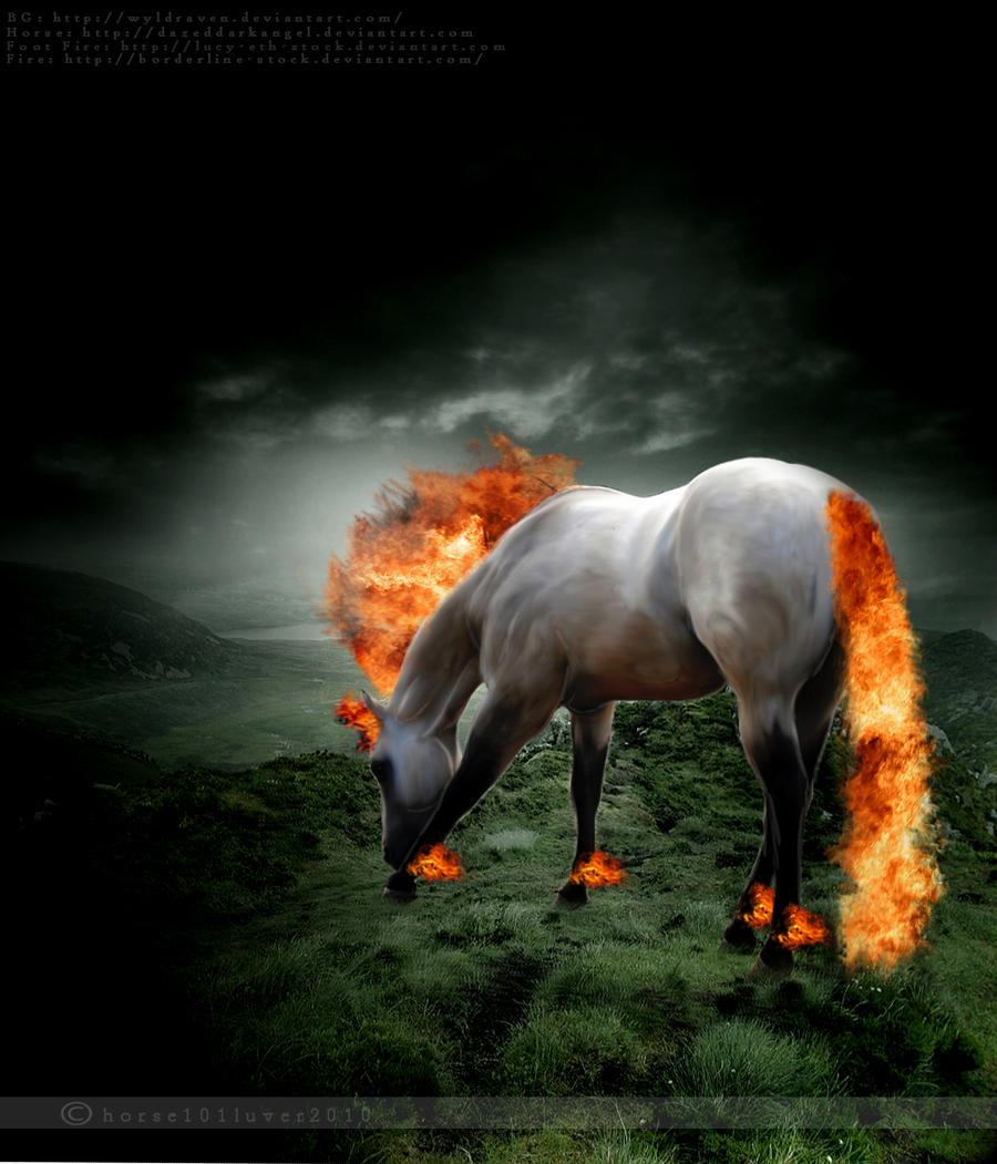 A fire heard (FINSHED!)*Pick n play* Fire_Horse_by_Horse101Luver2010