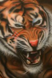 tiger closeup by b-r-a-i-n-i
