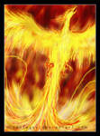 The birth of the phoenix