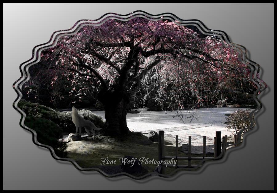 Lone Wolf's Garden III by LoneWolfPhotography