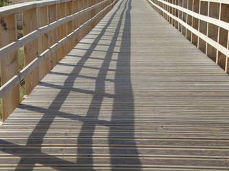 Ponte by petrasoul