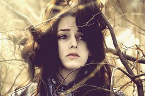 seesaw by LauraZalenga