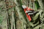 my own wooden hammock