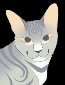 JagodowaBabaeczka's Profile Picture
