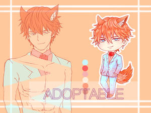 (( OPEN ))ADOPTABLE by WP Seazebra (1)