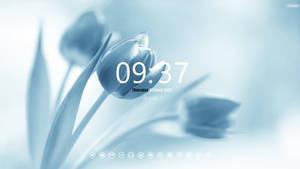 Cleaner Desktop19