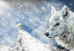 Snow king by ghostwolfen