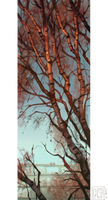 birch tree by loish