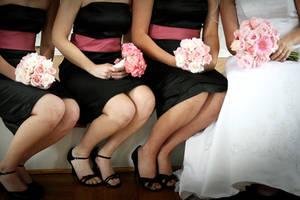 The Wedding Party by Ashleydeyo