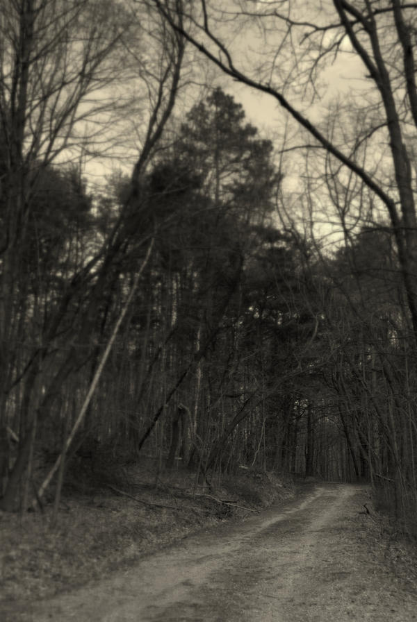 Through the Woods by Kyle197