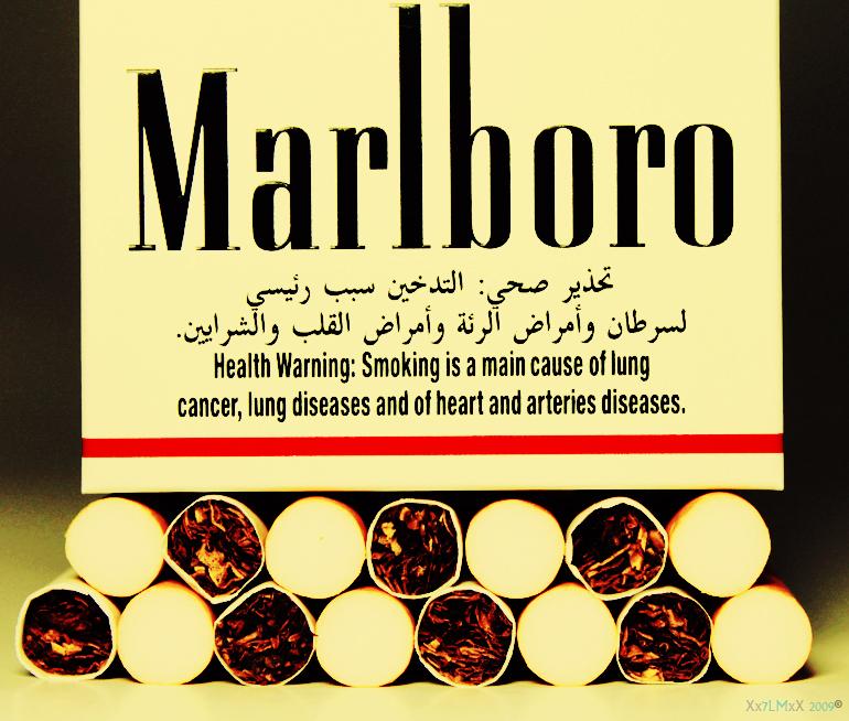 Marlboro by 7LM