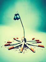 Smoking kills slowly 2 by 7LM