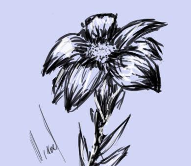 flower by zanyhow