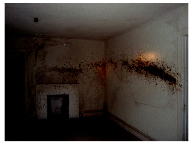 Graffiti Wallpaper For Bedrooms Whitby Old Insane Asyl...