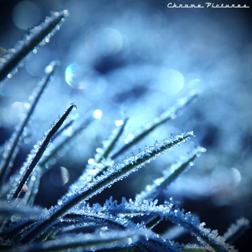 Frozen Destiny by AljoschaThielen