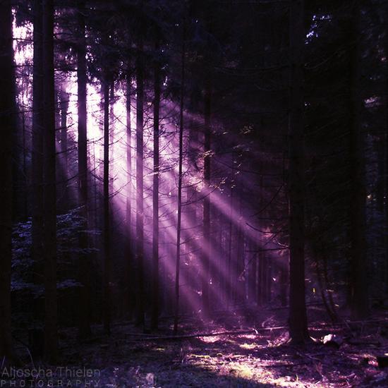Purple Spirit by AljoschaThielen
