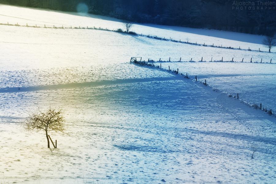 Winter Wonderland by AljoschaThielen