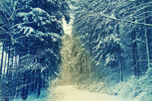 Snowy by AljoschaThielen
