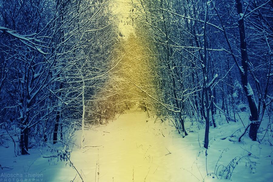 Golden Path by AljoschaThielen