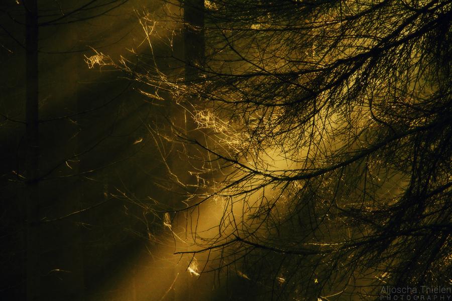 Illumination by AljoschaThielen