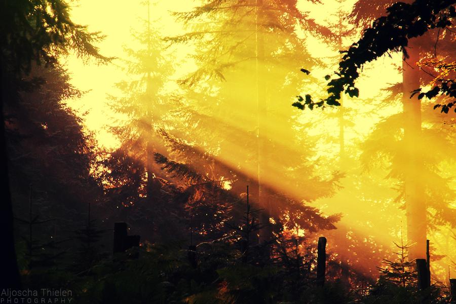 Warm Breath by AljoschaThielen