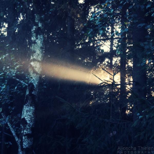 New Light by AljoschaThielen