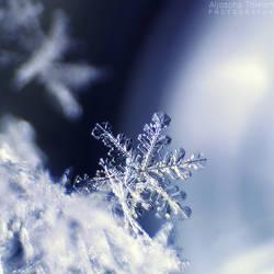 Little Sparkle by AljoschaThielen