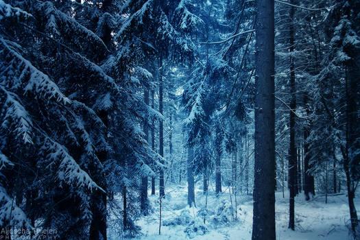 Winter in Narnia