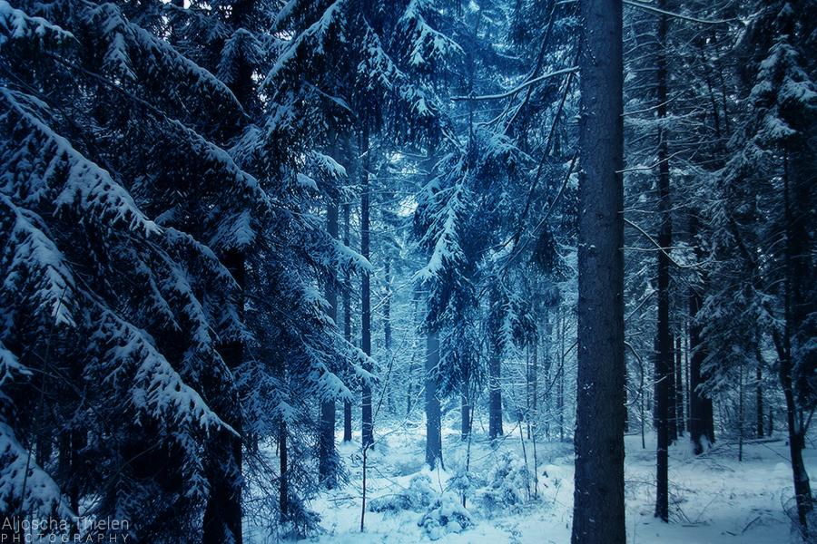 Winter in Narnia by AljoschaThielen
