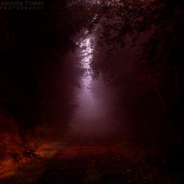 Path of Darkness by AljoschaThielen