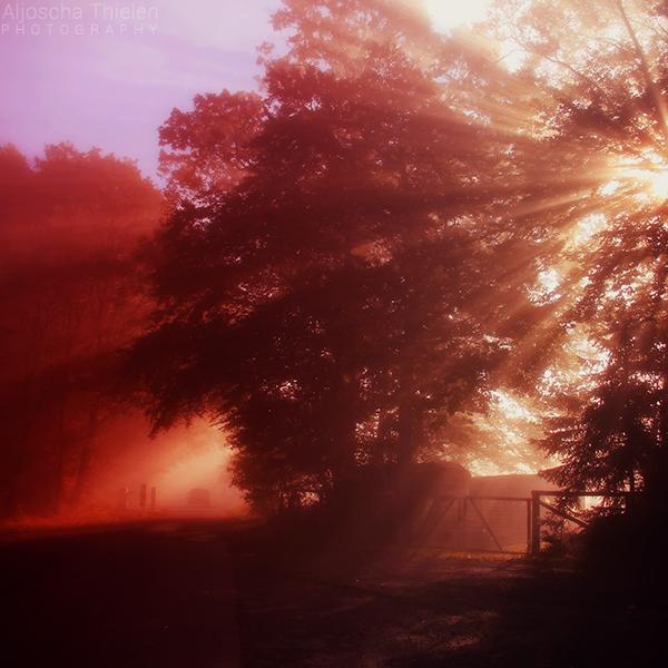 Flaming by AljoschaThielen
