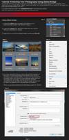 Adobe Bridge: Mass Copyright