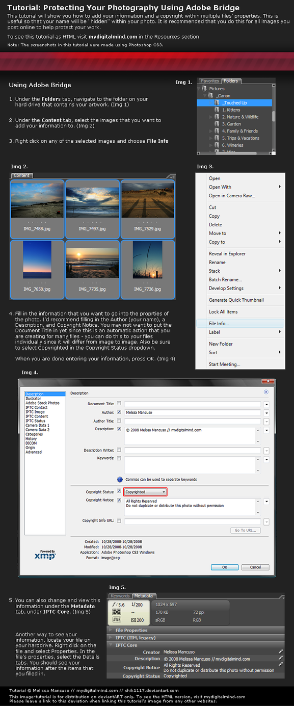 Adobe Bridge: Mass Copyright by mydigitalmind