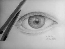 First Realistic Eye. by Vanites