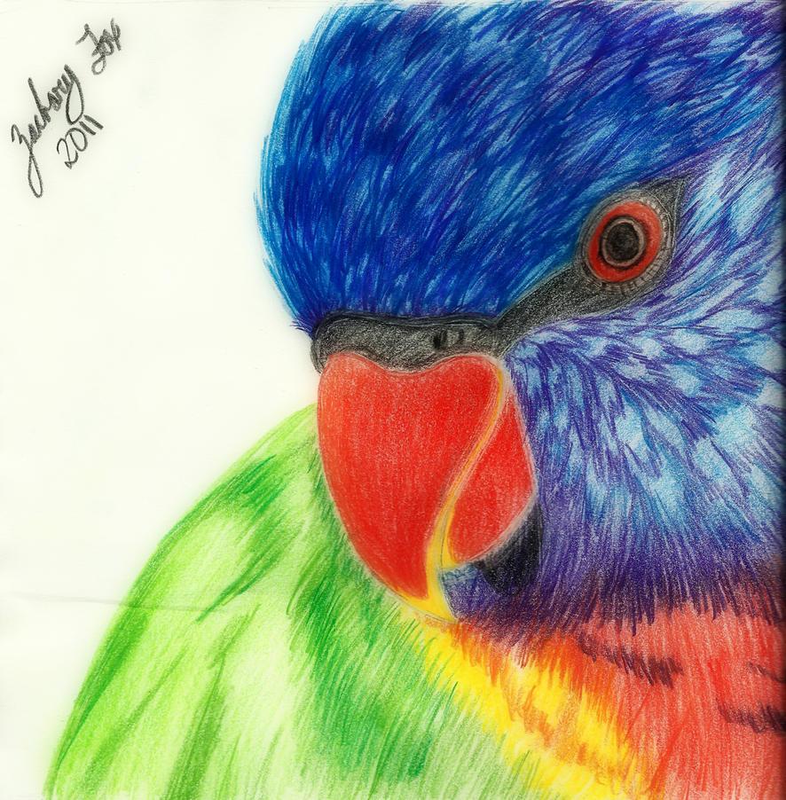 Bird-Sketch by El-Fox