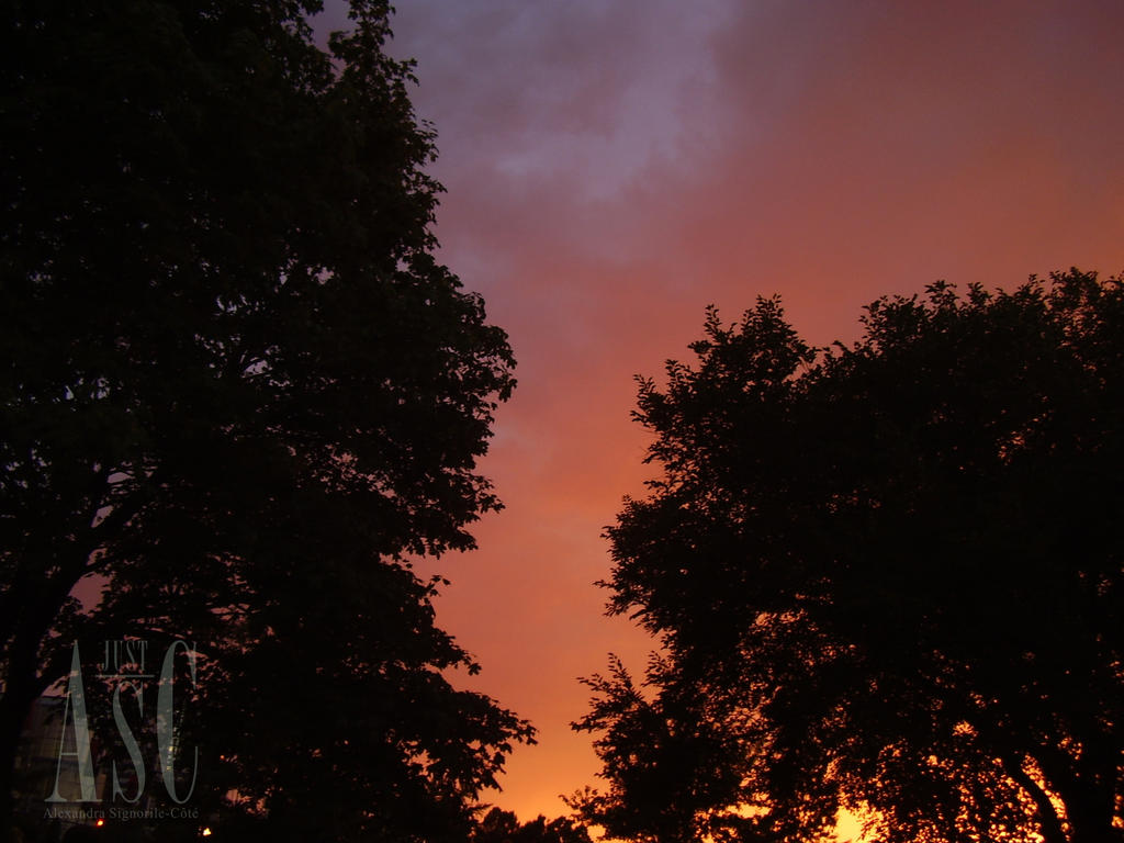 Evening Fire by Pentacle5