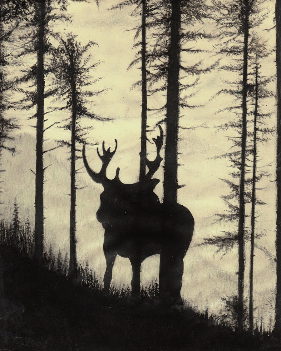 Moose by lucium55