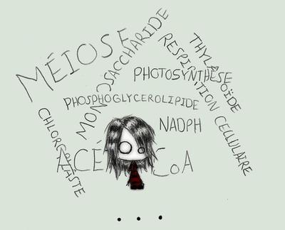 Zz-sleep's Profile Picture