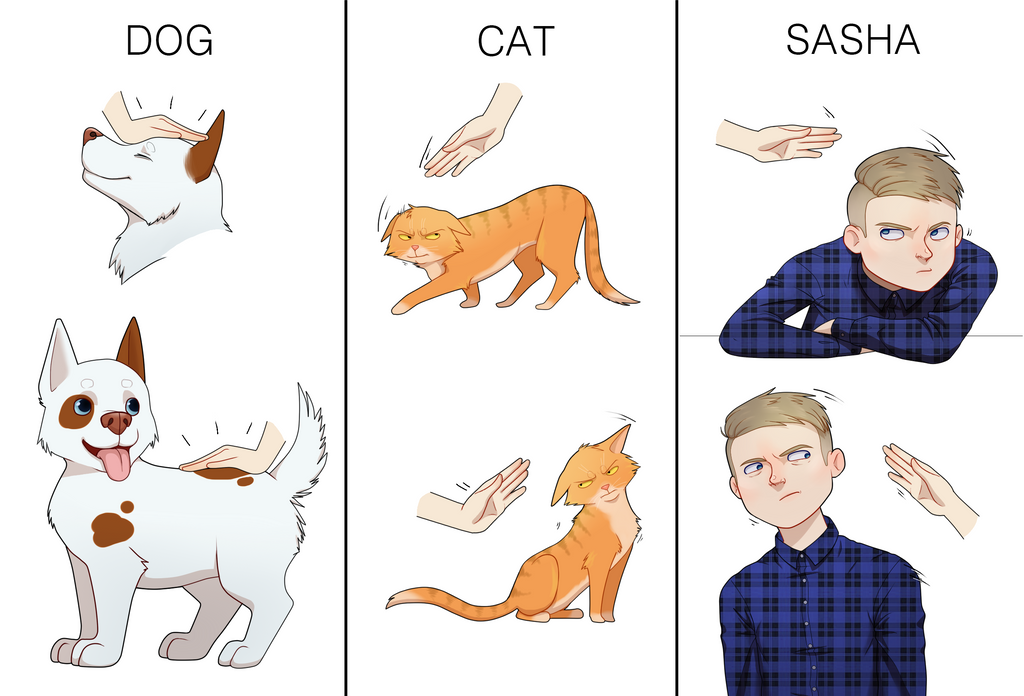 comparison essay cats vs dogs