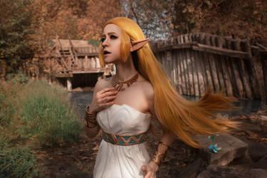 Princess Zelda: Calamity is coming