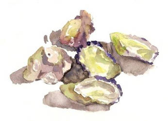 0002 - Oyster Shells by GlenRandom