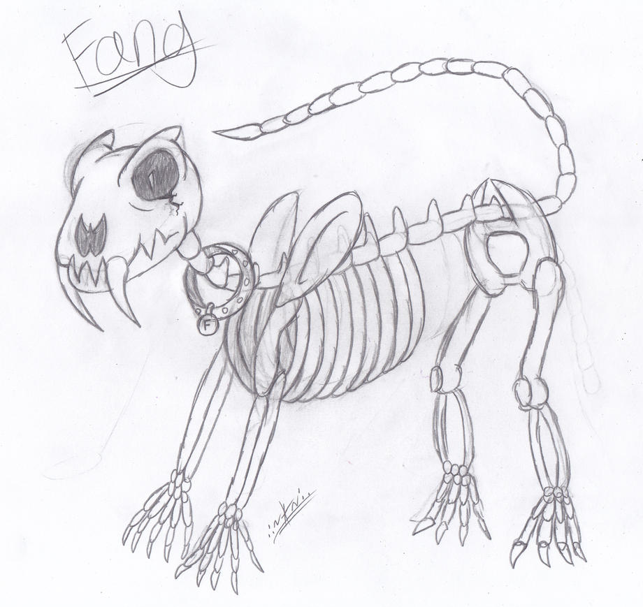 undertale fang the skeleton saber tooth tiger by arianatheechidna