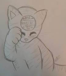 Fragile Kitty