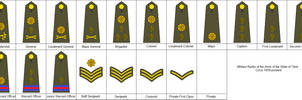 Rank Insignia of the Tibetan Army
