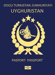 Fictional Uyghur Passport by kyuzoaoi