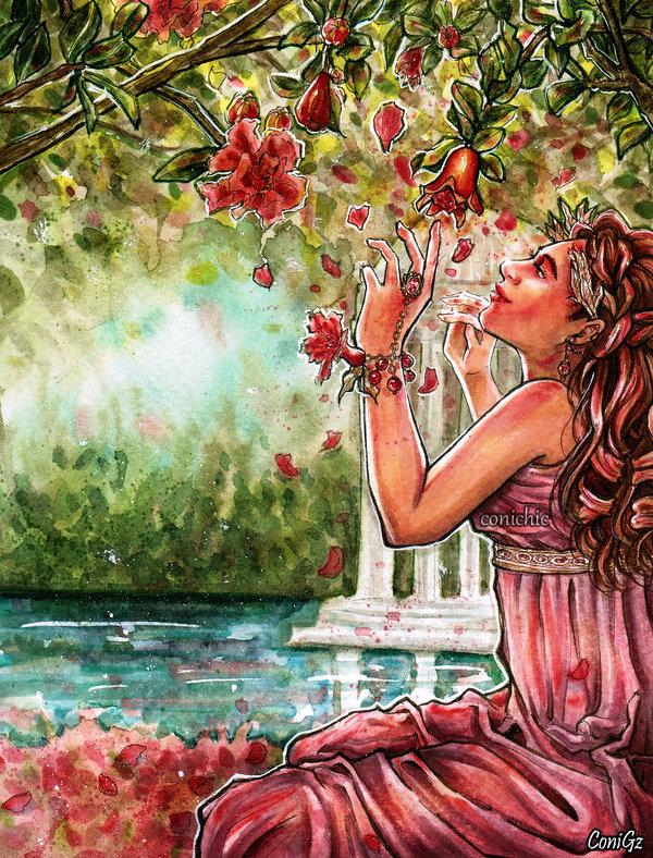 Pomegranate daydream by conichic