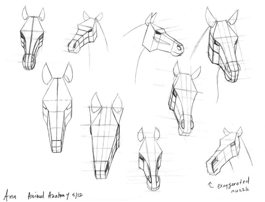 Horse heads by anncocopuff on DeviantArt